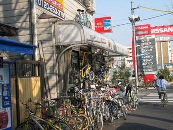 wada_cycle.jpg